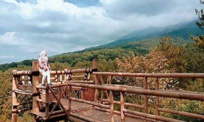 Menikmati Keindahan Alam Wisata Negeri Bambu Pasuruan