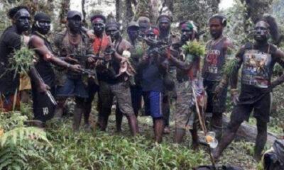 Aksi Teror Ferry Ellas, Danton OPM yang Tewas Ditembak Satgas Nemangkawi