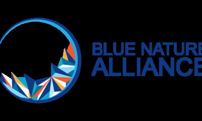 Blue Nature Alliance: Upaya Konservasi Lautan Global