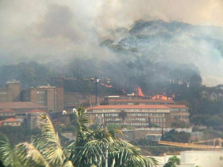 Kebakaran di Taman Nasional Gunung Meja