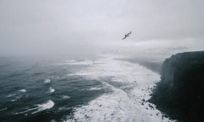Siklon Odette Bertumbuh, BMKG Surabaya Imbau Masyarakat Pesisir Waspadai Gelombang Tinggi