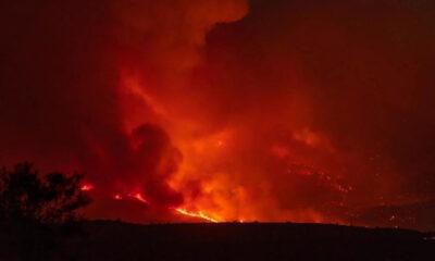 Puluhan Kebakaran Hutan Terjadi di Bagian Barat AS
