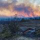 Kebakaran Hutan di Turki Tewaskan Satu Orang, 10 Lainnya Luka-Luka