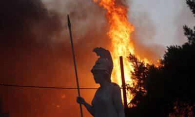 81 Kebakaran Hutan Terjadi di Yunani